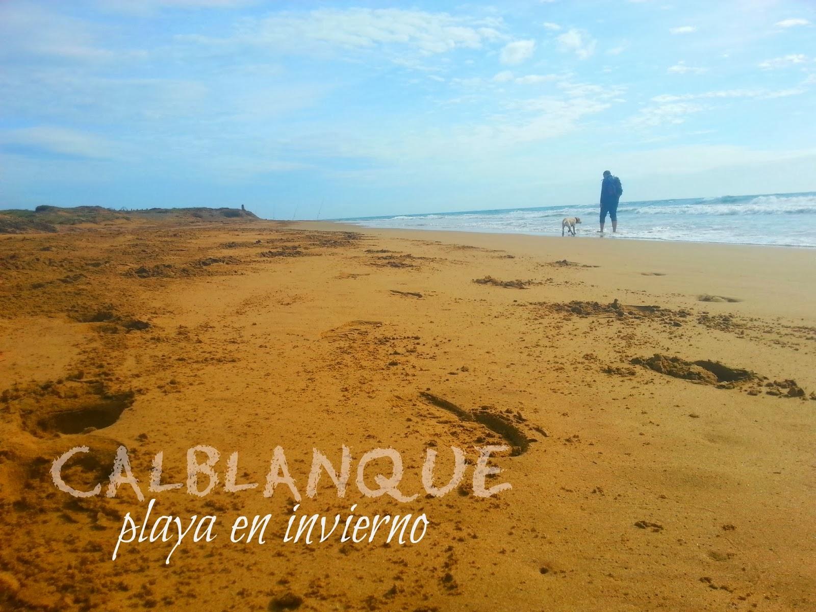 CALBLANQUE: playa en invierno